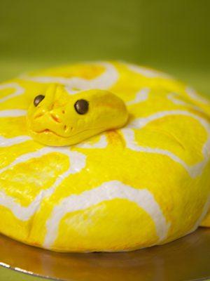 Tarta con forma de serpiente, cubierta con fondant amarillo y manchas blancas con pintura comestible, y una pequeña cabeza tallada en fondant.
